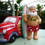 hawaii-santa-christmas-wm